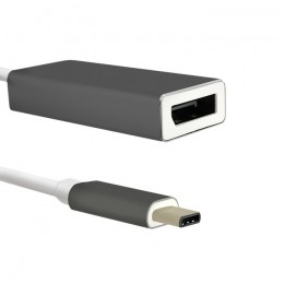Adapter USB 3.1 Typ C męski | DisplayPort żeński